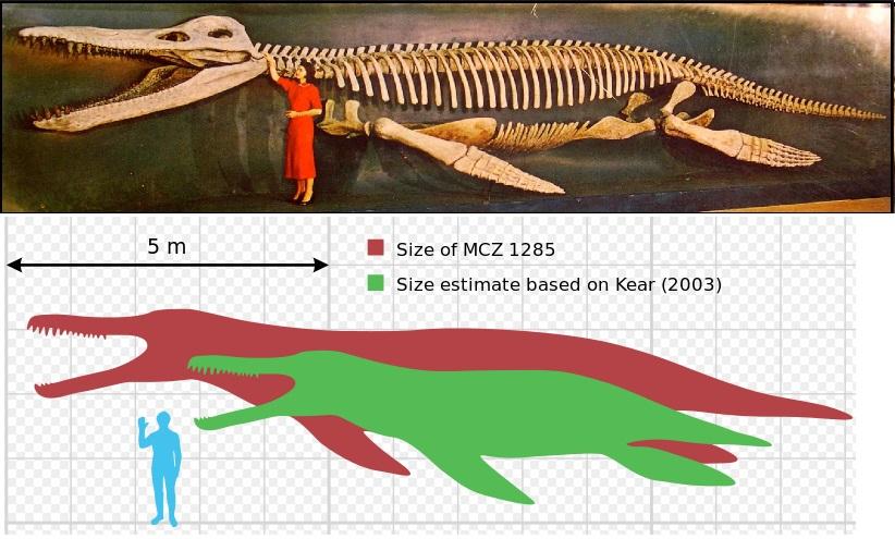 Pliosaur Vs Mosasaur | www.pixshark.com - Images Galleries With A Bite!